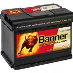 BANNER Buffalo Bull 60 AGM